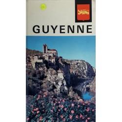 Les nouvelles provinciales : Visages de la Guyenne