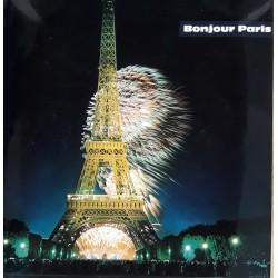 François Brigneau - Bonjour Paris